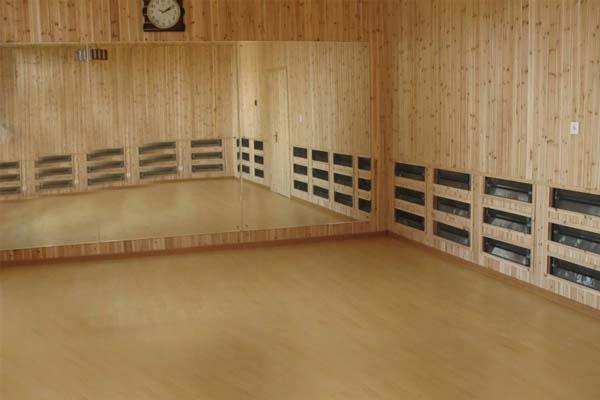 高温瑜伽房-全木装饰